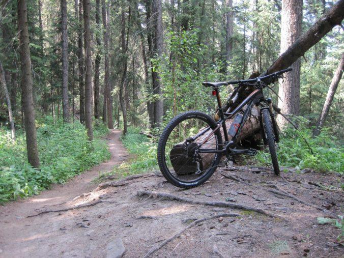 Fish Creek trail day